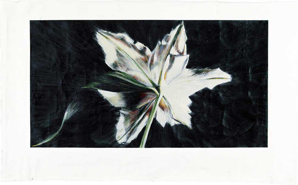 Star, acrylics on canvas, 119 x 192 cm, 2004