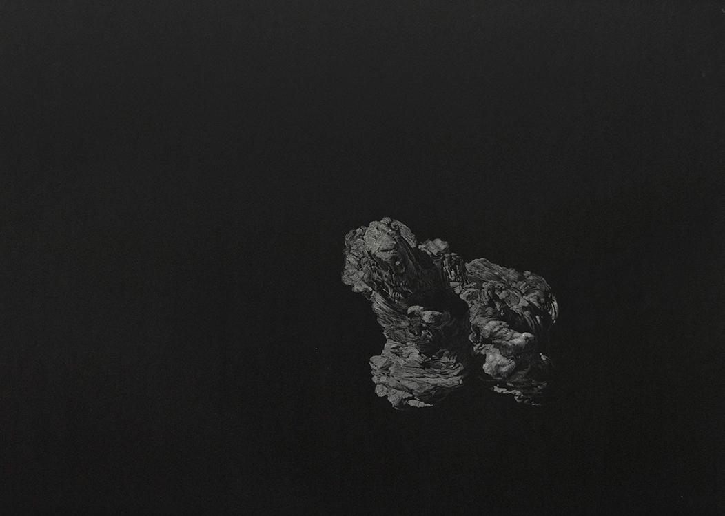 Pantelis Chandris, A Very Small World, white carbon on black palladium, 45 x 63 cm, 2012